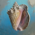 conch-1